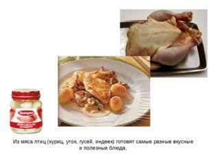 Из мяса птиц (куриц, уток, гусей, индеек) готовят самые разные вкусные и поле