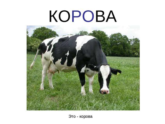 КОРОВА Это - корова