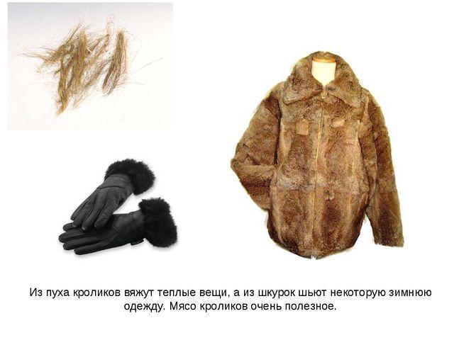 Из пуха кроликов вяжут теплые вещи, а из шкурок шьют некоторую зимнюю одежду....