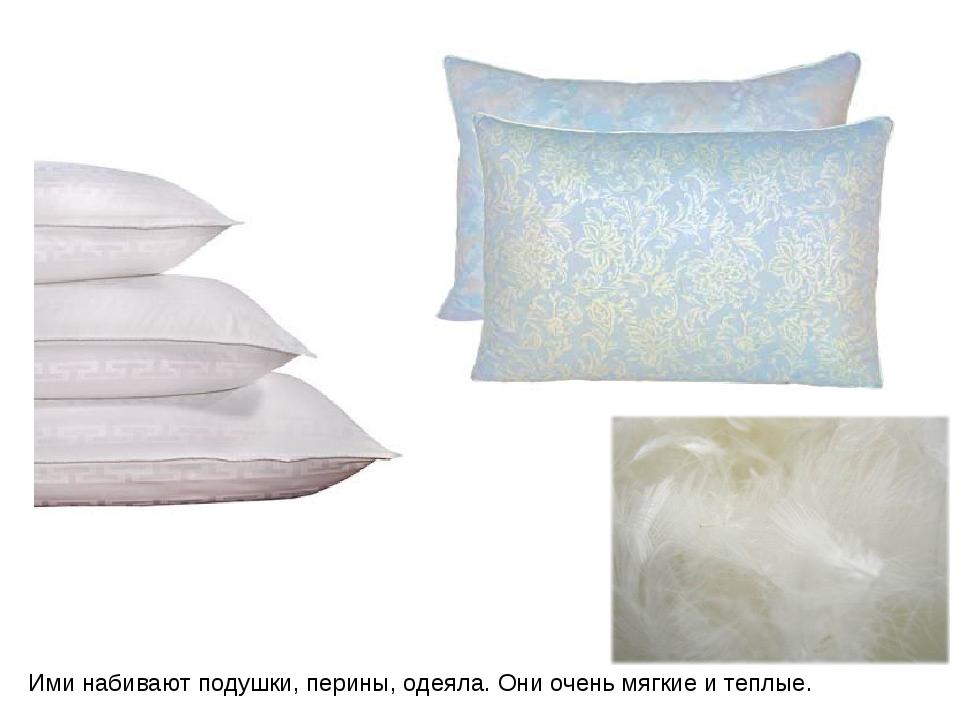 Ими набивают подушки, перины, одеяла. Они очень мягкие и теплые.