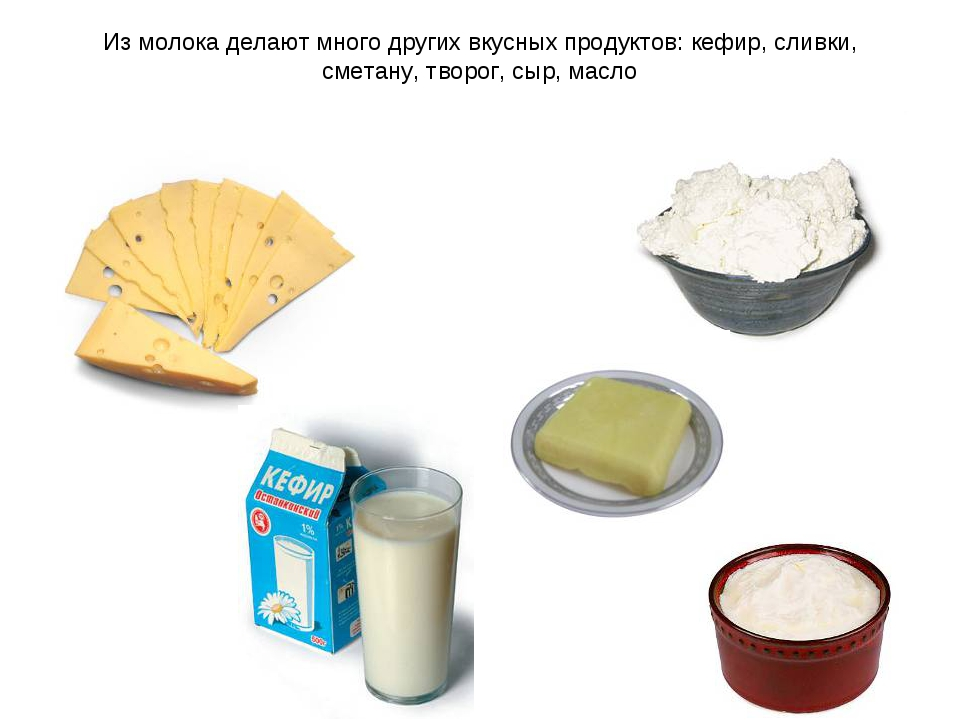 Как из молока сделать сметану в домашних условиях
