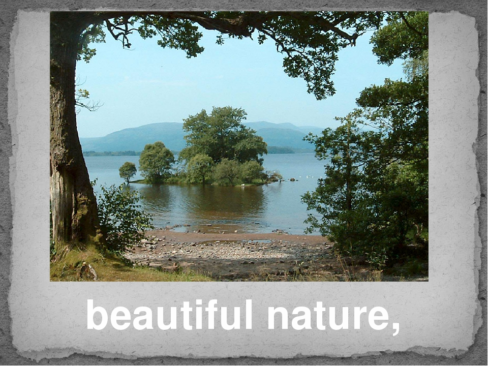 beautiful nature,