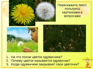 Перескажите текст, пользуясь картинками и вопросами На что похож цветок одува