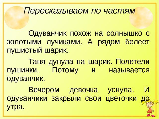 Пересказываем по частям Одуванчик похож на солнышко с золотыми лучиками. А...