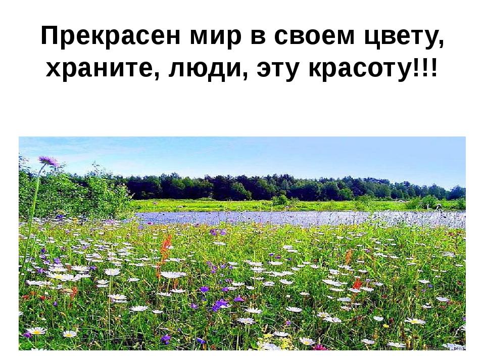 Прекрасен мир в своем цвету, храните, люди, эту красоту!!!