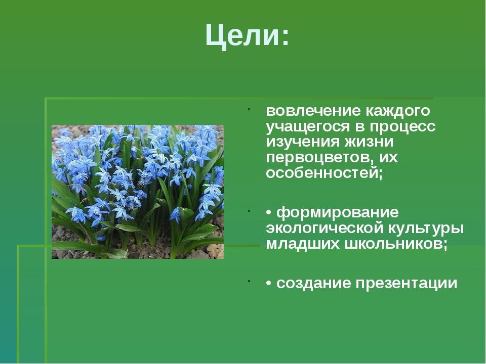 Цели: вовлечение каждого учащегося в процесс изучения жизни первоцветов, их о...