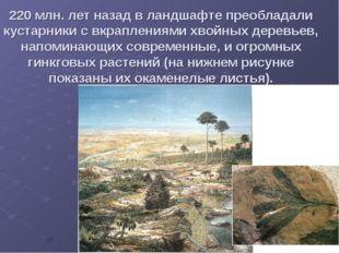 220 млн. лет назад в ландшафте преобладали кустарники с вкраплениями хвойных