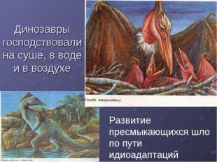 Динозавры господствовали на суше, в воде и в воздухе Развитие пресмыкающихся