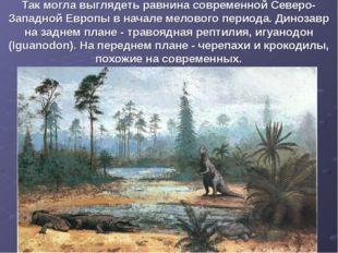 Так могла выглядеть равнина современной Северо-Западной Европы в начале мелов