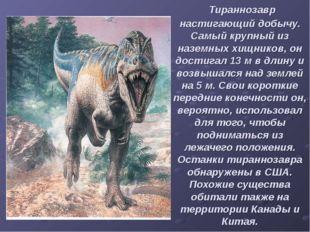 Тираннозавр настигающий добычу. Самый крупный из наземных хищников, он дости