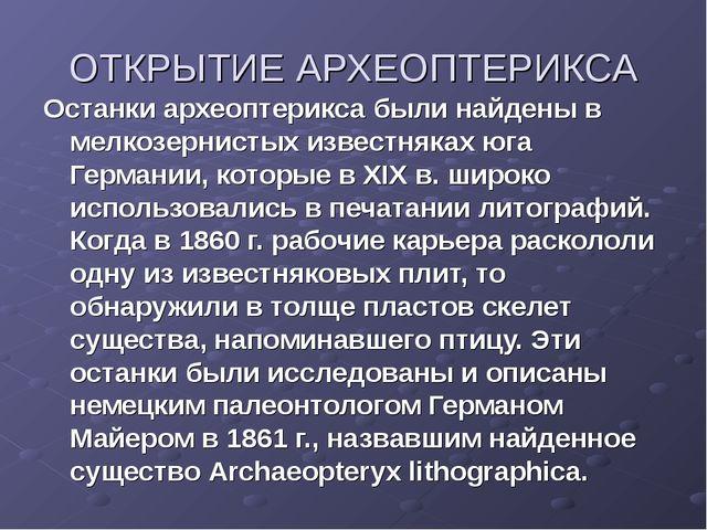 ОТКРЫТИЕ АРХЕОПТЕРИКСА Останки археоптерикса были найдены в мелкозернистых из...