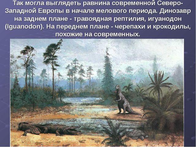 Так могла выглядеть равнина современной Северо-Западной Европы в начале мелов...