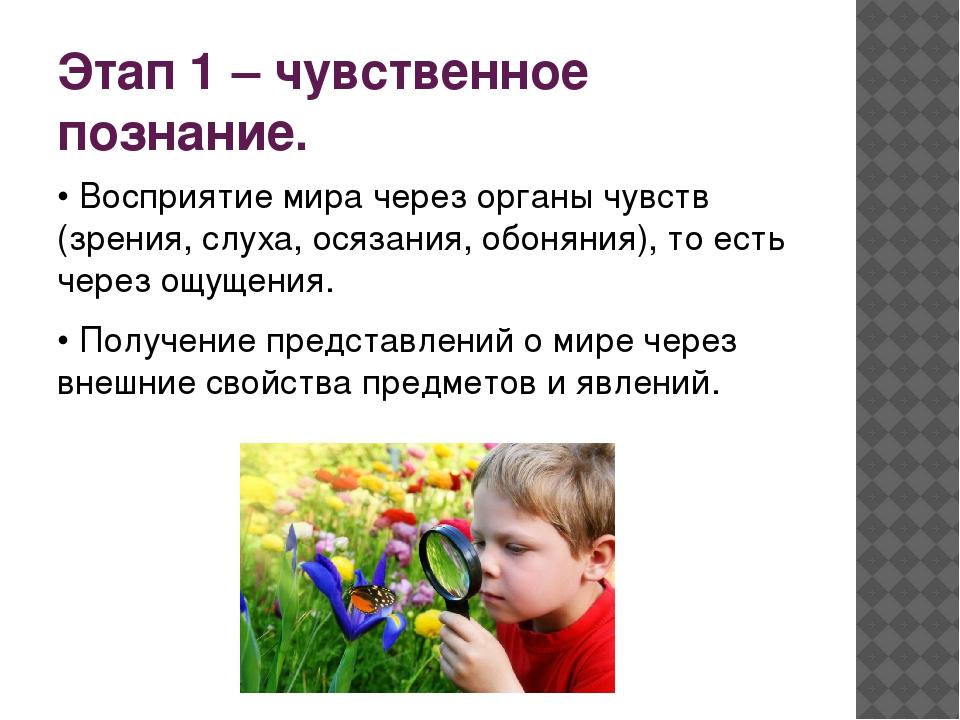Этап 1 – чувственное познание. • Восприятие мира через органы чувств (зрения,...