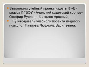 Выполнили учебный проект кадеты 5 «Б» класса КГБОУ «Ачинский кадетский корпус
