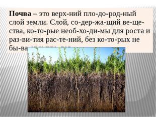 Почва –это верхний плодородный слой земли. Слой, содержащий вещества