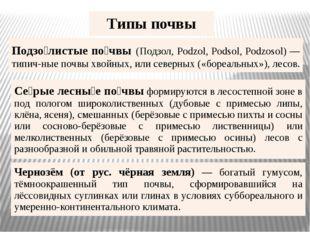 Типы почвы Подзо́листыепо́чвы(Подзол,Podzol,Podsol,Podzosol) —типич-ныепочвы
