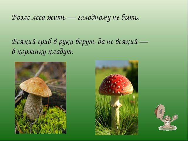 Возле леса жить— голодному небыть. Всякий гриб вруки берут, даневсякий—...