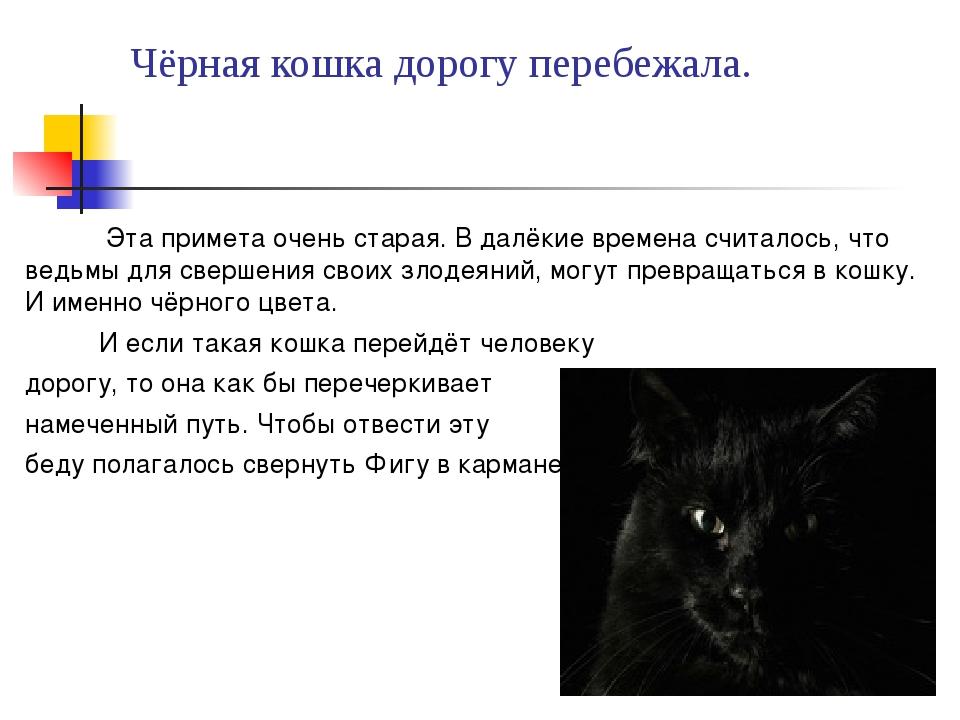 Чёрная кошка дорогу перебежала. Эта примета очень старая. В далёкие времена с...