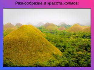 Разнообразие и красота холмов: