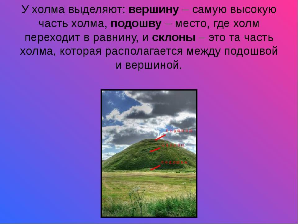У холма выделяют:вершину– самую высокую часть холма,подошву– место, где х...