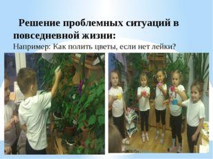 Решение проблемных ситуаций в повседневной жизни: Например: Как полить цветы
