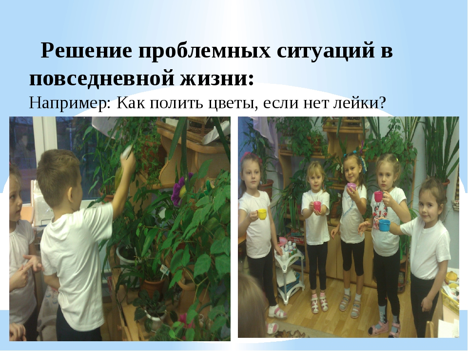 Решение проблемных ситуаций в повседневной жизни: Например: Как полить цветы...