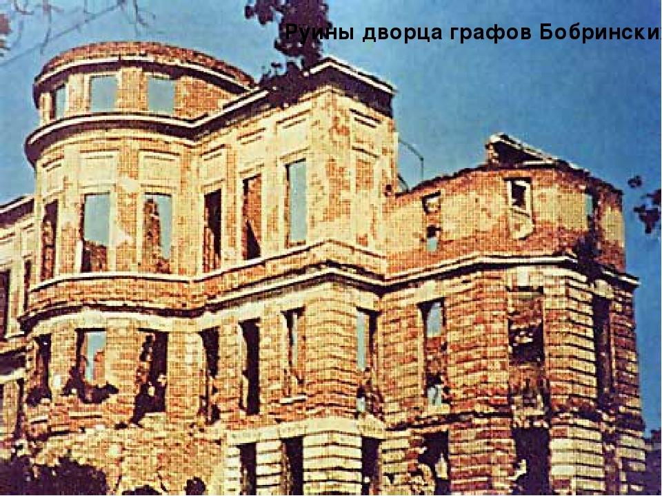Руины дворца графов Бобринских Руины дворца графов Бобринских