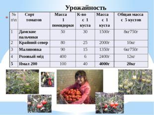 Урожайность № п\п Сорт томатов Масса 1 помидорки К-вос 1 куста Масса с 1 кус
