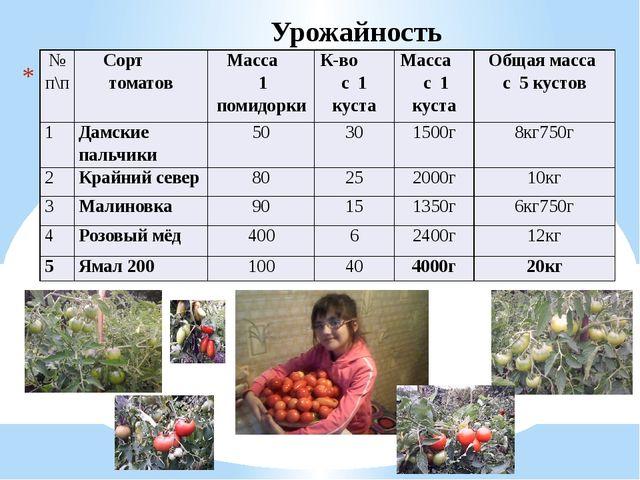 Урожайность № п\п Сорт томатов Масса 1 помидорки К-вос 1 куста Масса с 1 кус...