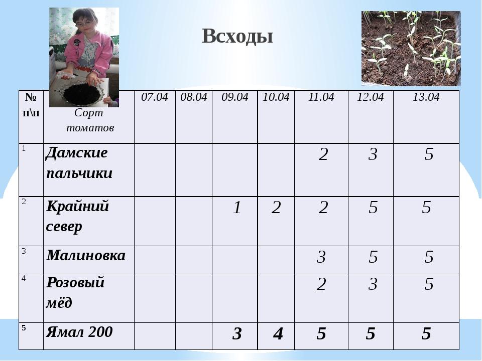 Всходы № п\п Сорт томатов 07.04 08.04 09.04 10.04 11.04 12.04 13.04 1 Дамские...
