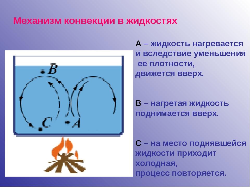 Механизм конвекции в жидкостях А – жидкость нагревается и вследствие уменьшен...