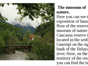 The museum of nature. Here you can see the exposition of fauna and flora of