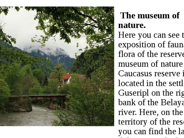 The museum of nature. Here you can see the exposition of fauna and flora of...
