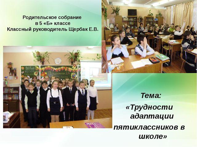 Родительское собрание в 5 «Б» классе Классный руководитель Щербак Е.В. Тема:...