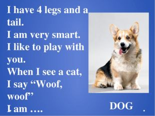 I have 4 legs and a tail. I am very smart. I like to play with you. When I se