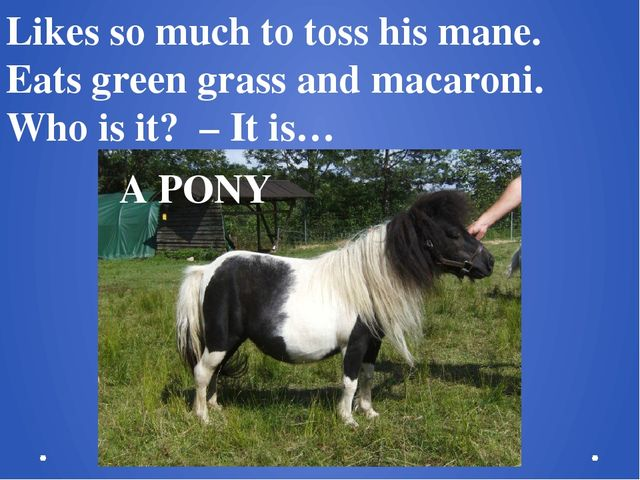 Likes so much to toss his mane. Eats green grass and macaroni.  Who is it? –...