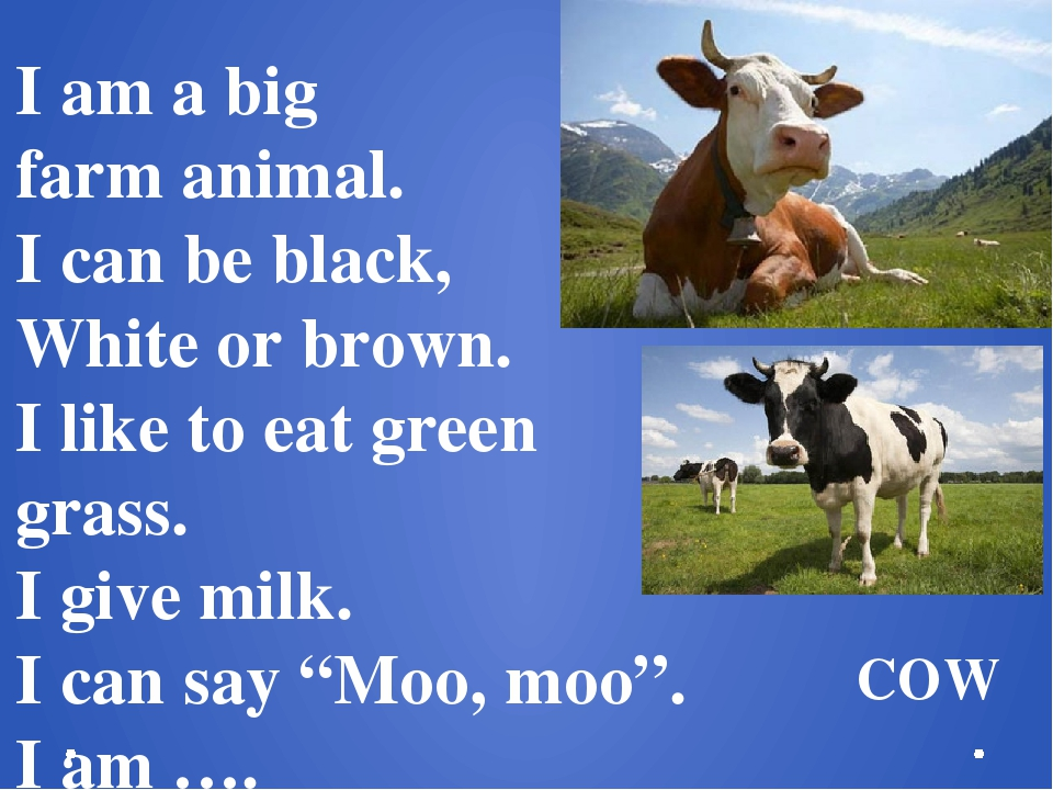 I am a big farm animal. I can be black, White or brown. I like to eat green g...