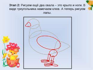 Этап 2: Рисуем ещё два овала – это крыло и ноги. В виде треугольника намечаем