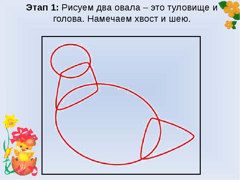 Этап 1: Рисуем два овала – это туловище и голова. Намечаем хвост и шею.