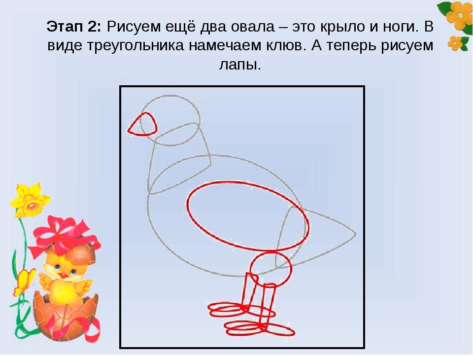 Этап 2: Рисуем ещё два овала – это крыло и ноги. В виде треугольника намечаем...
