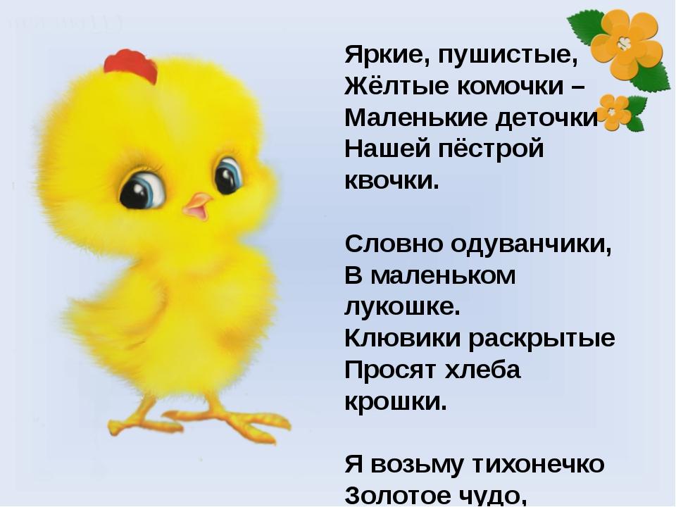 тем связанных цыпленок стихи для самых маленьких выборе жилета песца