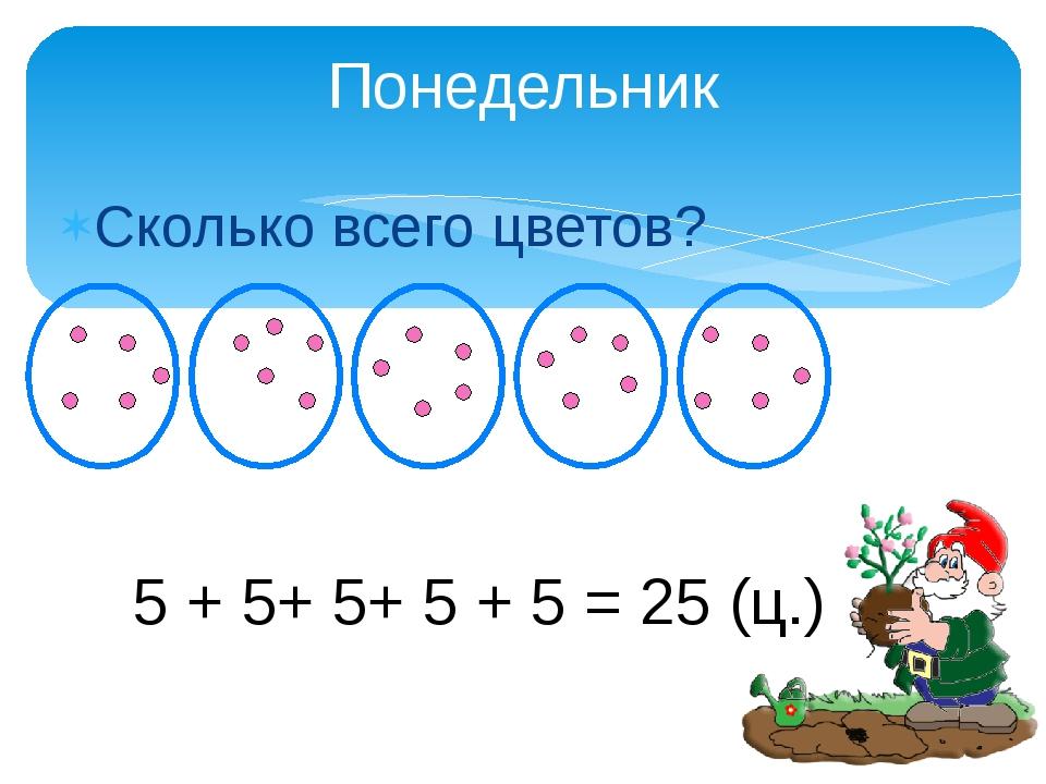 Сколько всего цветов? Понедельник 5 + 5+ 5+ 5 + 5 = 25 (ц.)