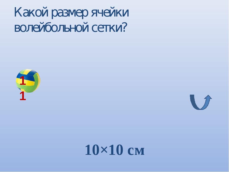 Какой размер ячейки волейбольной сетки? 10×10 см