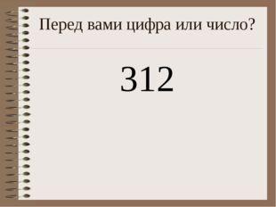Перед вами цифра или число? 312