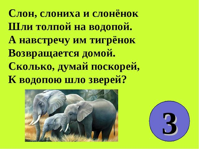 Слон, слониха и слонёнок Шли толпой на водопой. А навстречу им тигрёнок Возвр...