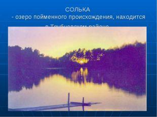 СОЛЬКА - озеро пойменного происхождения, находится в Трубчевском районе