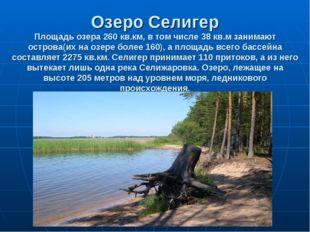 Озеро Селигер Площадь озера 260 кв.км, в том числе 38 кв.м занимают острова(и