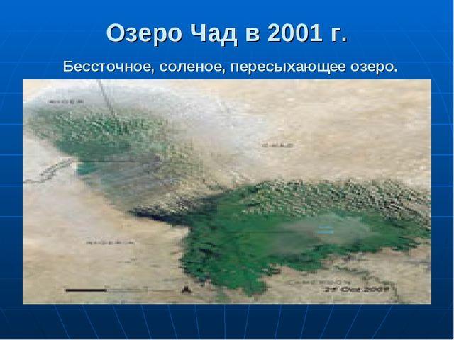 Озеро Чад в 2001 г. Бессточное, соленое, пересыхающее озеро.
