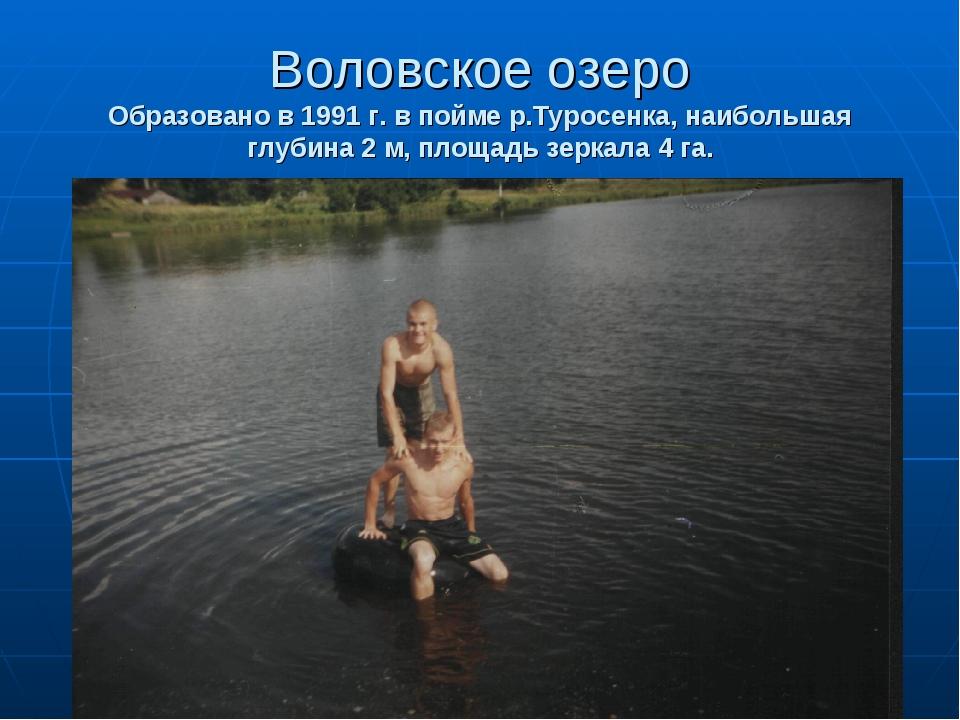 Воловское озеро Образовано в 1991 г. в пойме р.Туросенка, наибольшая глубина...