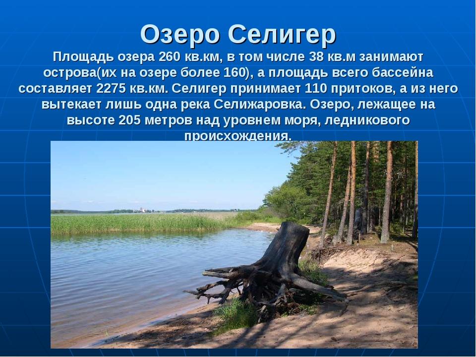 Озеро Селигер Площадь озера 260 кв.км, в том числе 38 кв.м занимают острова(и...